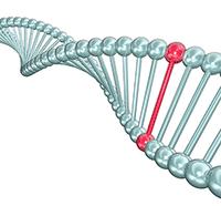 قانون وراثت ژنتیک